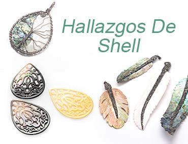 Hallazgos De Shell