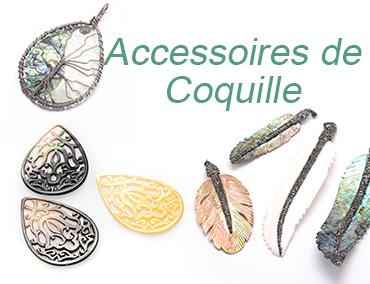Accessoires de Coquille