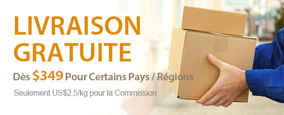 Livraison Gratuite Dès $349 Pour Certains Pays / Régions
