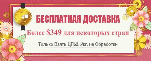 Бесплатная Доставка Более $349